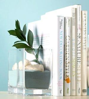 Glass terrarium for bookends on bookshelves